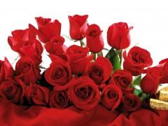 новости татарстана поздравление цветы