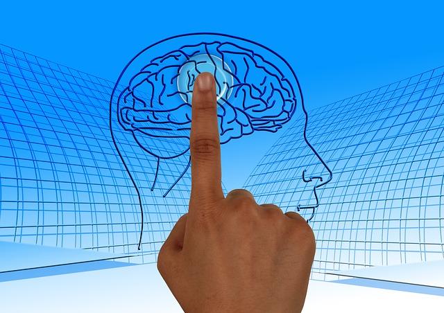 К вечеру объем мозга уменьшается - ученые