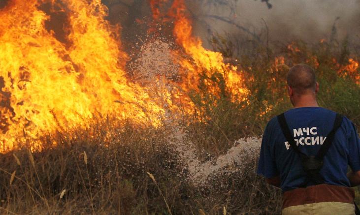 Высший уровень пожарной опасности лесов объявлен в 8-ми районах Татарстана