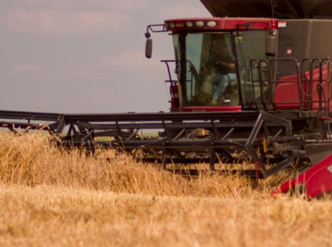 ВОрловской области намолотили 1,4 млн тонн зерна